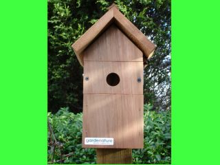Welcome to the My Bird Box Viewing page , www.mybirdbox.co.uk